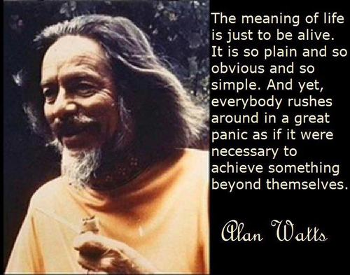 The-meaning-of-life-is-just