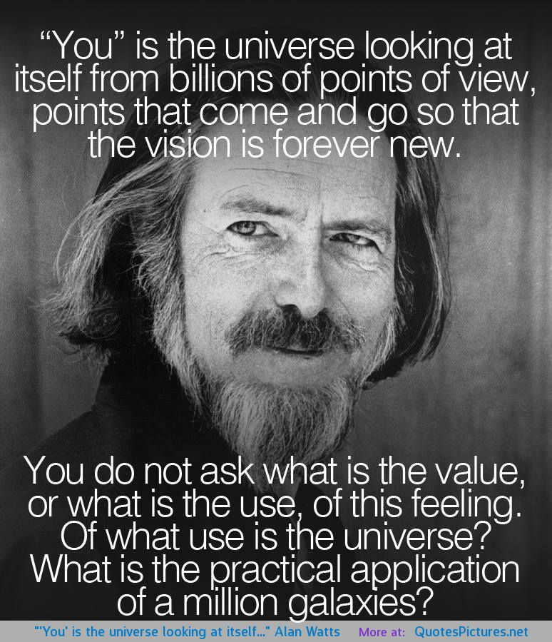 10065-alan-watts-quotes